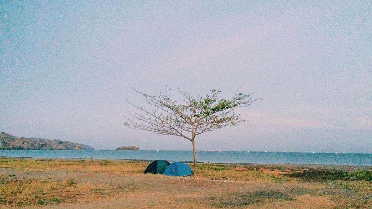 Camping di Pantai Palangpang